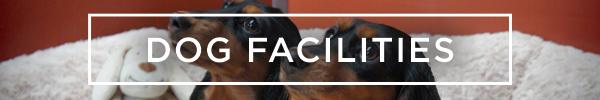 Dog Facilities